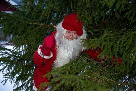 """MULENISSE: Rolf """"Mulen """"Karlsen holder i skrivende stund på å forberede nisseutstyret til søndagens julegrantenning."""