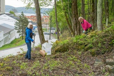 Røyken Dating Norway - Enslig i aurskog-høland / Ågotnes speed dating