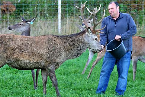 PÅ KARTET: Hurum Hjort på Solberg Gård leverer hjortekjøtt. Gården er en av flere lokale matprodusenter som nåer å finne på et digitalt smakskart.