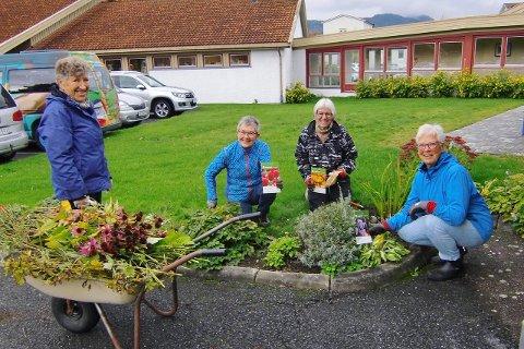 Blomsterplanting:  Blomsterpikene som holder området rundt Sandetun aktivitetssenter ryddig. Fra venstre Mette Lørdahl, Astrid Halvorsen, Bjørg Rivelsrud Rånes og Randi Vinje.