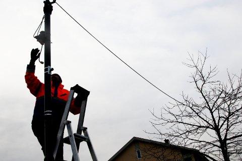 IKKE SUNT: Gartner André Endresen i Holmestrand kommune fastslår at trærne vil ta skade av at lysslyngene ikke tas ned mellom vintersesongene.