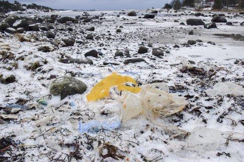 Blåste på land: Stormene i romjula førte til at stranda i Korsvika ble dynget ned av plastsøppel. På bildet er det vanskelig å se, men under det tynne snølaget befinner det seg tusenvis av små plastbiter langs hele vika. Alle foto: Morten Fredheim Solberg