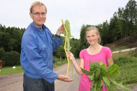 LØVETANN TIL KANINENE: Svein Aarholt sammen med feriegjest Marie Helene Weydahl, da hun satte rekorden i lengde på løvetannblad til kaninene.