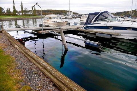 BLÅSKIMMER: Det er lett og se oljelaget i Havnebassenget, og ikke minst lukte det.