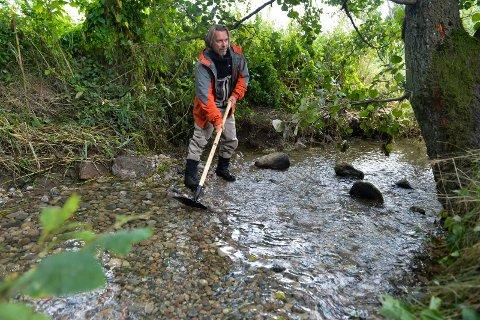 DUGNA: Christian Schanche jobbet i sommer med kultiveringsarbeide og la ut grus i Virikbekken som går ut i Istrevassdraget. Nå for tiden jobber han og resten av gjengen fra SFFAL med merking av fisk i samme vassdrag.
