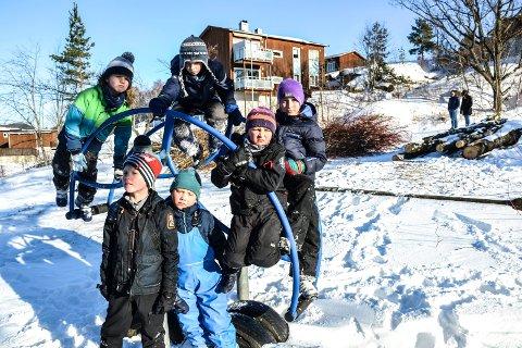 MISTET KLATRETRÆR: Disse barna i Maurveien hadde både trær å klatre i og en liten junel å leke i. Nå er alt borte. Bak fra venstre: Per Martin Jahren Andersen (8), Sindre Aasrum-Halstad (8), Victor Dahl Sundbø (8). Nærmest fra venstre: Gard Fjeldstad Larsen (8), Gabriel Fjeldstad Larsen (6) og Lukas Gåthaug Abrahamsen (8).