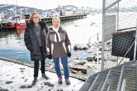 MÅ STOPPES: Hanne Riis-Christensen (t.v.) og Evy Bjerke reagerer på dumping av snø i havnebassenget.
