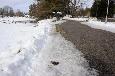 MYE DRITT: Våren er på vei, og mens snøen smelter dukker stadig mer hundebæsj opp i byen vår.