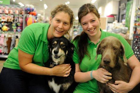 PÅ JOBB: Margareth Mathisen (f.v.) og Mari Galåen med hundene Cindy og Saga i butikken Musti. Dersom damene skaffer seg nye firbente venner, kan de søke foreldrepermisjon hos kjeden.