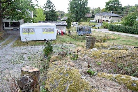 TAS UT: Den delen av det seks dekar store området på Vindal der stubbene står igjen, blir tatt ut av planen.