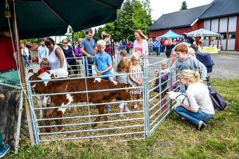 ÅPEN GÅRD: Det er alltid stor stas for barna når de får lov å hilse på dyra. Dette bilde er fra 2016, da ekteparet Anita og Harald Vataker åpnet gården sin på Øvre Lingelem.