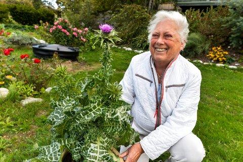 HEDERSPLASS: Planten dukket opp i kjøkkenhagen. Nå har Aase plantet den om i en stor potte og gitt den en hedersplass i hagen.
