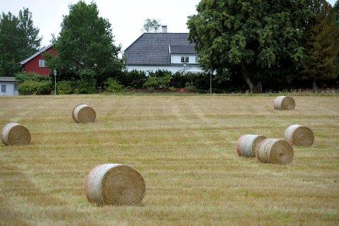 FORSVINNER: Fôrmangelen etter tørken i sommer har gitt mange bønder store utfordringer. Nå opplever enkelte bønder på Østlandet at halmballer forsvinner.