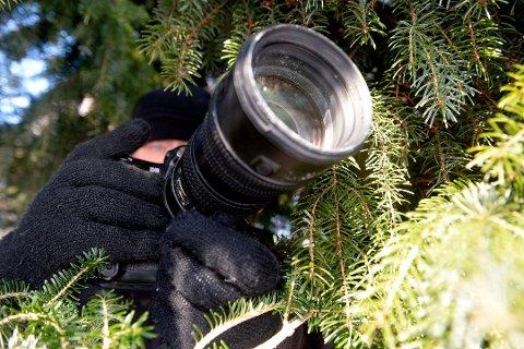 I SKJUL: Mannen som tok bilder av familien lå i skjul og knipset gjennom vinduer. Familien har tatt hendelsen svært hardt. Illustrasjonsfoto: Olaf Akselsen