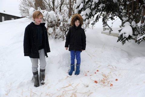 BLE SKREMT: I tre uker foret Anna Kvile og sønnene Mathias (10) og Sebastian (6) et rådyr i hagen deres. Så kom Viltnemnda og skjøt dyret.