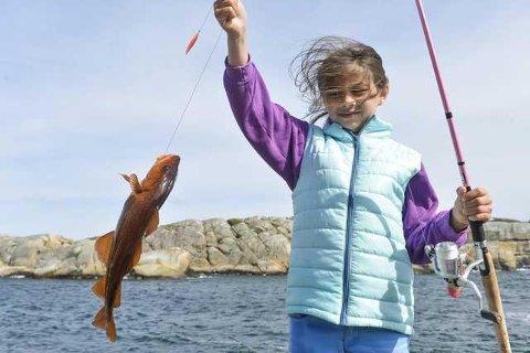 FORBUDT: Mange har barndomsminner om da de fisket en torsk fra svaberget eller landstedsbåten en sommerdag. Nå blir dette overlatt til historiebøkene.