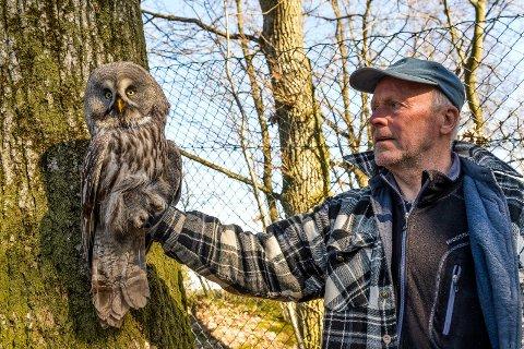 FRA HEDEMARKEN: Bjørn Gogstad Thorsen forteller at fuglen ble ringmerket på Løten i Hedemark i fjor sommer. Nå  begynner formen å komme på plass og snart skal ugla få fly fritt igjen.