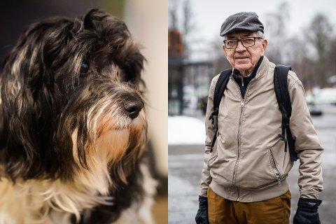 HUNDEAVGIFT: Sven Erik Lund ønsker å gjeninnføre en hundeavgift hvor man betaler i overkant av 200 kroner i året per hund, fordi det ville hjulpet på kommunens økonomi.