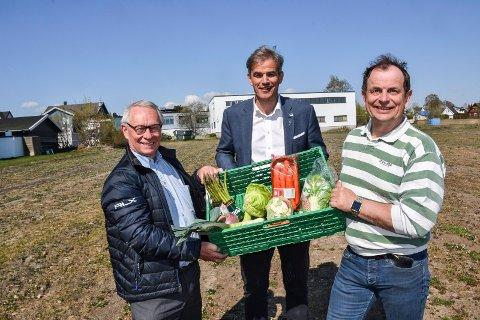 PARSELLER: Høyre-politikeren Tor Steinar Mathiassen (t.v.) vil dele opp det nær 30 mål store arealet i parseller, slik at innbyggerne selv kan dyrke grønnsaker. Det støtter både ordfører og partifelle Bjørn Ole Gleditsch (i midten) og Bjarne Sommerstad (Sp).