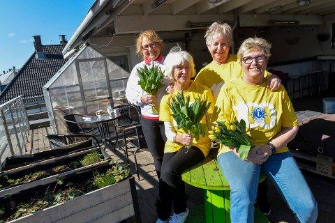 TULIPANER: Lions kvinnene Ellen Olsen (fra venstre), Else Kvammen, Berit Vestrum Hansen og Kari Austrheim, er stolte av sitt slagord: «Det er bedre å bygge barn enn å reparere voksne». Her på taket av Napergården dyrker de sammen med ungdommen, sine egne grønnsaker.