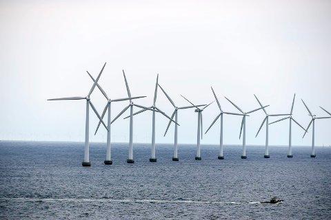 VINDKRAFT: Flytende vindmøller er løsningen. Vi vil uansett ikke ha sånt i vår kommune, vedtok et enstemmig planutvalget i sin høringsuttalelse til NVE.