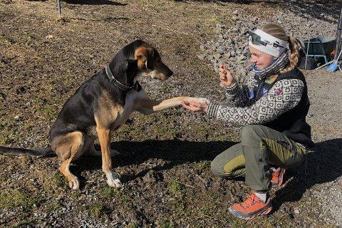 HUNDEKJØRING: Maren Emilie Leegaard har åtte hunder i kennelen. Her er hun hjemme i Andebu, sammen med Fia.