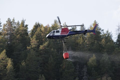 GULT VARSEL: Meteorologisk institutt har sendt ut gult farevarsel for skogbrann Østafjells.