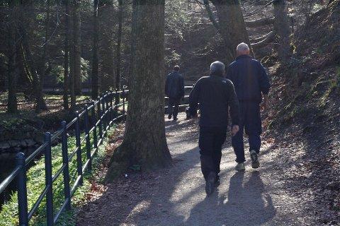 LEGGER TIL RETTE: Å legge til rette for turløyper er viktig. Her fra Sandvedparken som er et populært turområde i Sandnes.