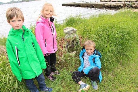 BRYR SEG: Alexander Gjøse Ravndal, Josefine Espedal Strand og Adrian Brendemoen foran eggene som ble lagt i sanktansbålet på Høle. Trioen bryr seg om eggene og håper mink og andre farer ikke oppdager dem.