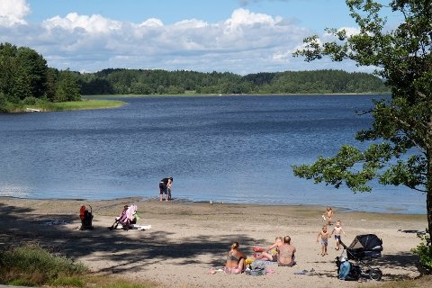 Bildet er tatt ved Bodalstranda ved Isesjø en tidligere sommer.