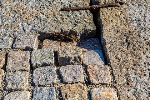 FARLIG: Rino Hansen mener at løs brostein kan være farlig for besøkende som ferdes i området rundt Pæddekummen i Sandesund.