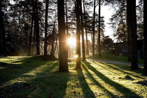 SOL: I helga vil det bli gløtt av sol i Sarpsborg, men det blir også overskyet vær og nedbør.