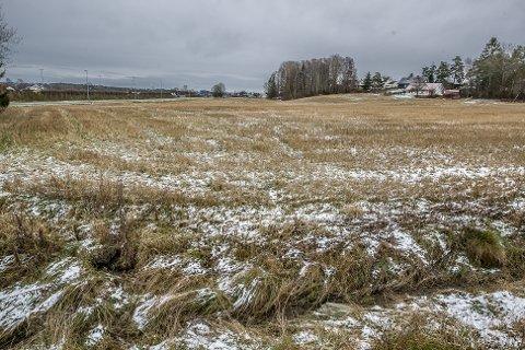 BJØRNSTADMYRA: Dette er Bjørnstadmyra som er inne i en reguleringsprosess der området skal omreguleres fra dyrket mark industriområde.