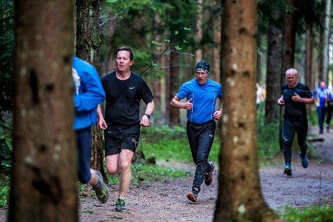 BLI KJENT: Sønsdag kan du bli bedre kjent med Kalnesskogen og den 5,1 kilometer lange «torsdagsløypa».