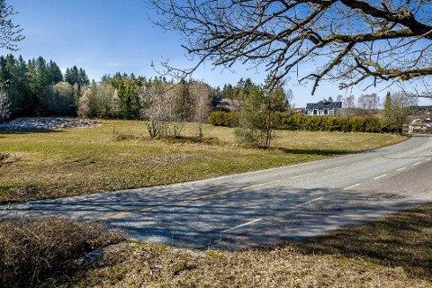 NYE BOLIGER: Innover i dette området kan det komme nye boliger om noen år. Kamperhaug har nå levert et planinitiativ til kommunen. Det meste av området er en skogbevokst skråning, men det er også noe dyrkbar mark. Veien i forgrunnen er Stasjonsveien.