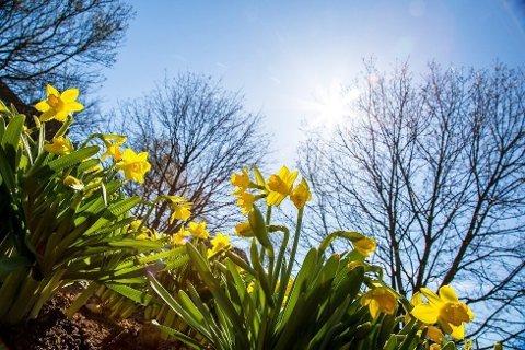 Solstrålene har varmet godt i påsken. Men snart kommer skyene.
