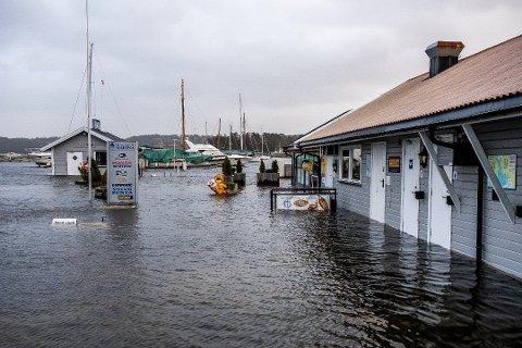 REKORDHØYT: Aldri tidligere har Skjebergkilen Marina registrert en så høy stigning i vannet som 1,74 meter. Fredag skal vannet stige igjen.