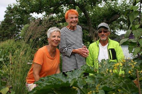 Tone Lise Helgesen (58), Anne Lise Schei (74) og Svein Odden (66) nyter gode dager på Borregaards Kolonihage. Dette er en plass for deg som bor i rekkehus eller leilighet og som ikke har tilgang til en stor hage hjemme.