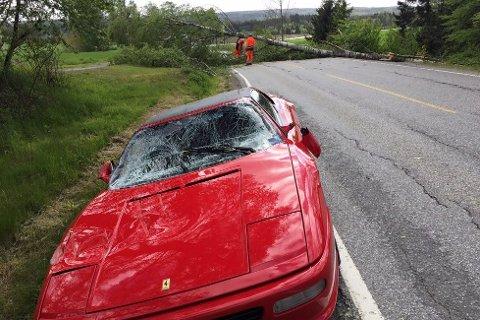 Slik så Ferrarien ut etter møtet med treet.