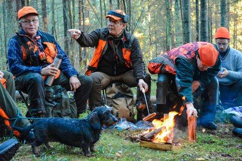 MYE JAKTHUNDER: Statstikkken fra NKK viser at typiske jakthundraser er populære i Eidsberg.