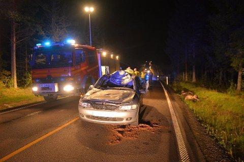Smell: På riksvei 22 ved Jørgentvedt i Trøgstad smalt det skikkelig da denne bilen traff en elg i september. Høst er høysesong for påkjørsler av dyr.