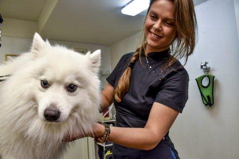 Viggo (4,5) får julevasken: Vitalija Vainauskaite (32) steller ekstra mange hunder før jul.