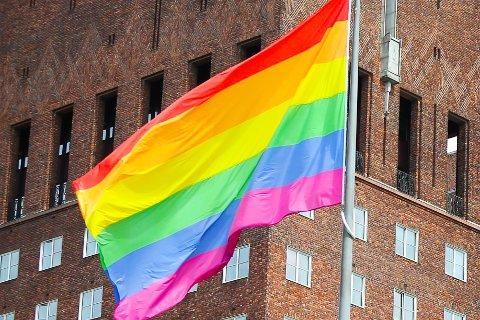 Dette flagget vil du nok legge merke til når du kjører på E18 inn til Ørje sentrum.