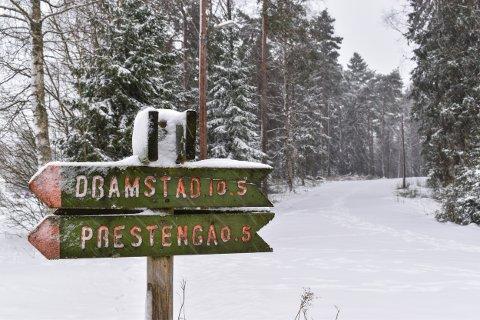 NOK SNØ: Nå blir det skiløype i lysløypa i Askim. I løpet av torsdag blir det kjørt i både lysløypa og på Linna. Løypene på jordene er det nok fortsatt litt for lite snø til å kjøre.