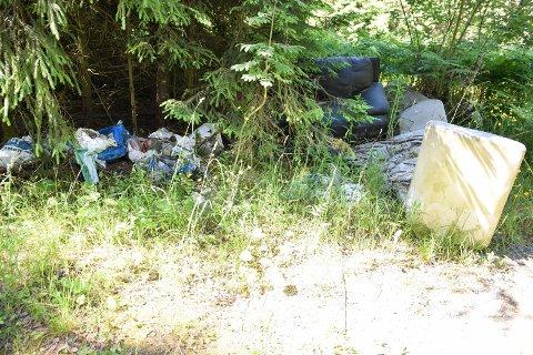 SKROT: Noen har dumpet sofaer, tomflasker, en dass og annet søppel et lite stykke fra Edwin Ruuds Omsorgssenter.