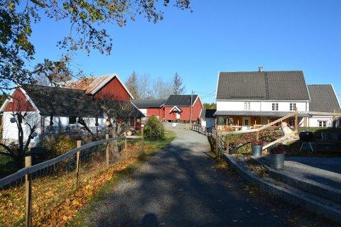 SAMME TILBUD: The Funny Farm i Hobøl (bildet) er en Inn på Tunet-gård. Nå ønsker Trøgstad å etablere et lignende tilbud i sitt nærmiljø. ARKIVFOTO