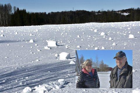 Else (79) og Rolf Gjestang (78) har bodd rett sør for Skjønhaug i alle år. Har aldri sett et lignende fenomén.