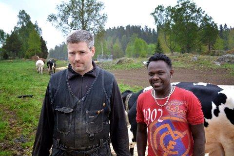 FÔR: Thor Amund Halvorsrud og avløser Abraham Kidane Gebray gjør alt de kan for å sørge for at det kommer inn nok fôr til de 90 dyrene på  Nordre Halvorsrud. ARKIVFOTO