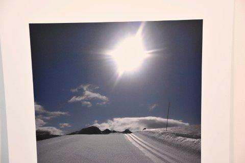 Humor: – Dette bildet har jeg kalt «Solfaktor 40», forteller Kristin Westbye.  Jeg må snakke med Vibekes stemme når jeg lager titler, forklarer hun.