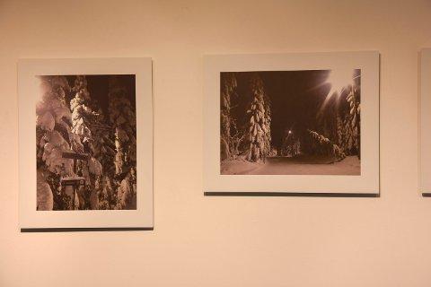 Nuet: Vibeke Skofterud fanget nuet under treningsturene, som snøtunge grantrær. Da hendte det at hun også ringe mamma.